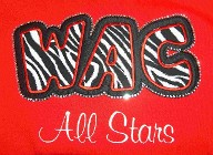 Zebra and Black Tackle Twill Applique, Rhinestone Outline and Embroidered All Stars